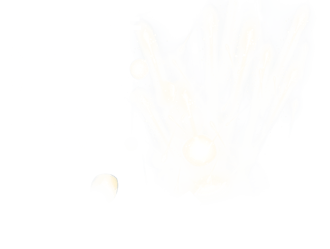 Charge and Win 2021